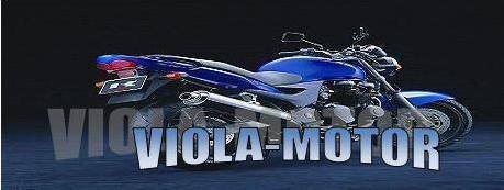 VIOLA-MOTOR