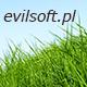 Serwis komputerowy Bełchatów, evilsoft.pl