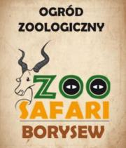 Zoo Safari